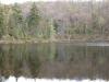 Cropsey Pond