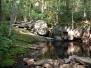 Central Pepperbox Wilderness 2010