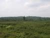 Oswegatchie Plain from High Rock