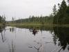 Second beaver pond