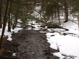 Hoxie Gorge stream