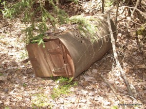 Discarded oil drum