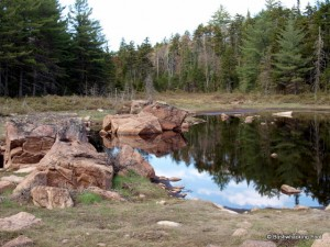 Rocks at pond in beaver meadow