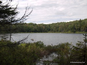 Upper South Pond