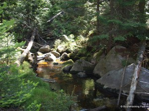 Whispering stream near campsite
