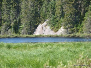 Boulder along pond's southern shore