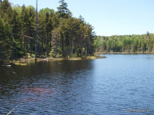 Unnamed destination pond