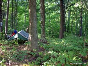 Campsite at Sitz Pond