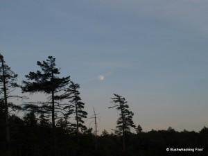 Moon over Sitz Pond