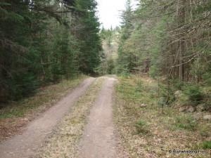 Raven Lake Road