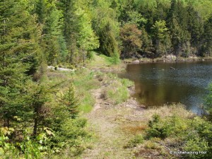 Slim Pond dam crossing